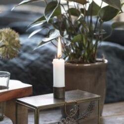 Set 6 candele corte – Rosa Peonia
