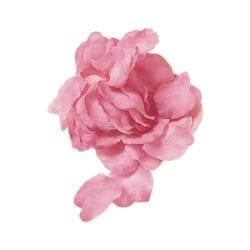 Confezioni Petali – Rosa antico