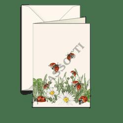 Biglietti auguri avorio – Coccinelle