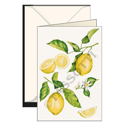 Biglietti auguri avorio – Limoni
