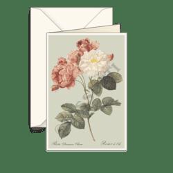 Biglietti auguri avorio – Rosa Damascata