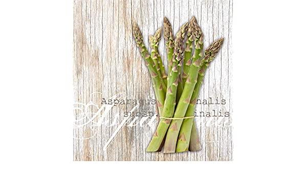 Tovaglioli di carta 3 veli – Asparagi