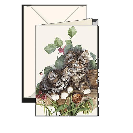Biglietti auguri avorio – Gatti
