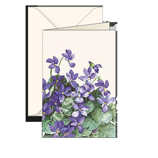 Biglietti auguri avorio – Violetta