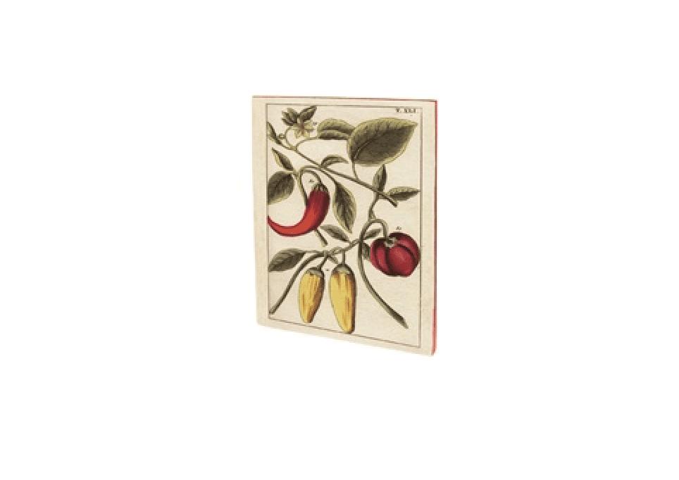 Quaderno vintage A5 – Peperoncini