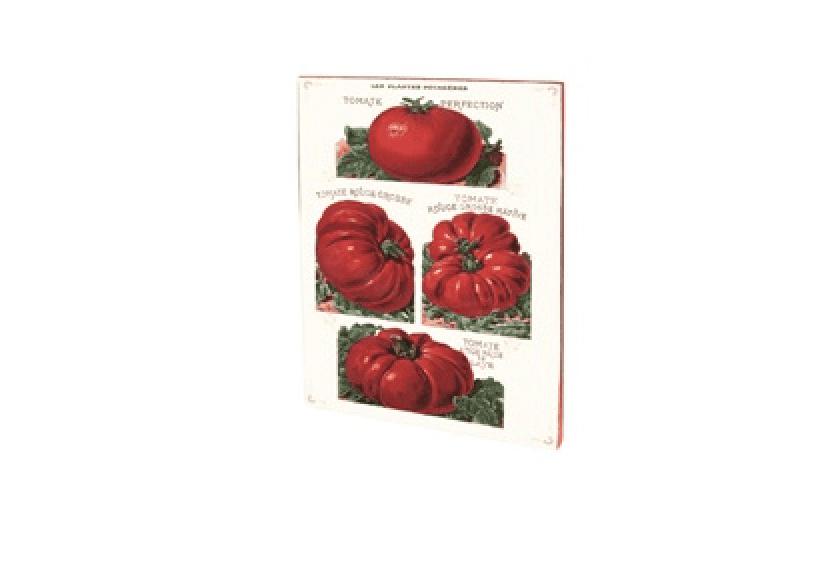 Quaderno vintage A5 – Pomodori
