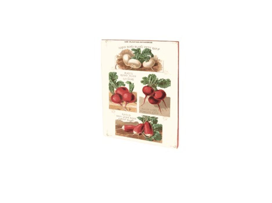 Quaderno vintage A5 – Ravanelli rossi