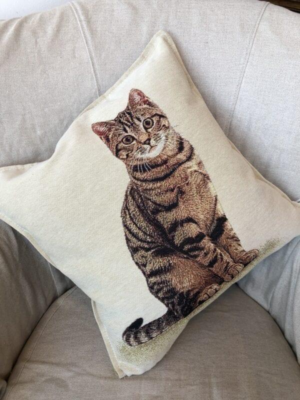 Cuscino – Gatto rosso e nero