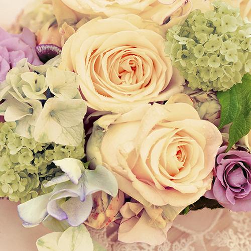 Tovaglioli di carta 3 veli – Rose bianche