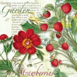 Tovaglioli di carta 3 veli – Strawberry Garden