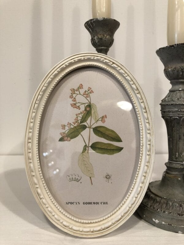 Cornice ovale avorio – Piccola