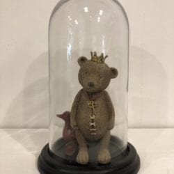 Campana in vetro porta oggetti
