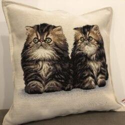 Cuscino con due gattini grigi
