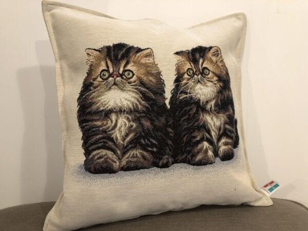 Cuscino con due gattini marroni