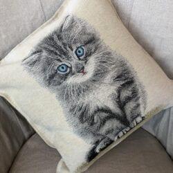 Cuscino – Gatto grigio con occhi celesti