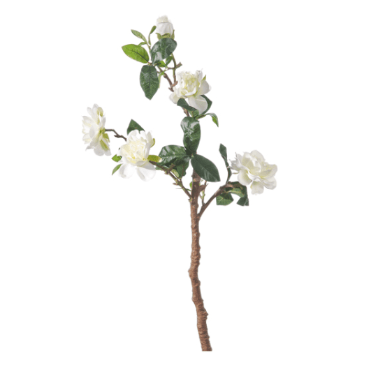 Mazzo di Gardenie – Bianco