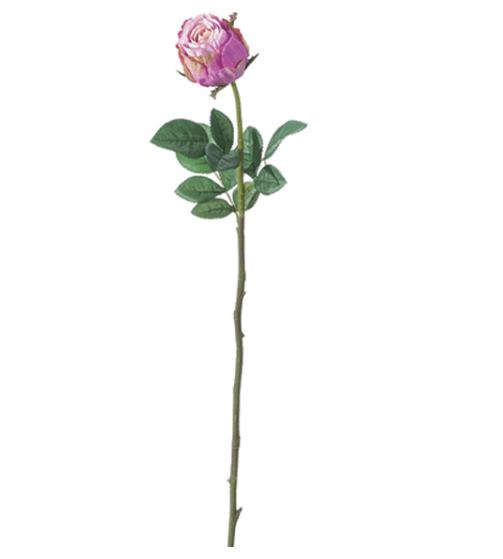 Bocciolo di rose maxi – Lilla