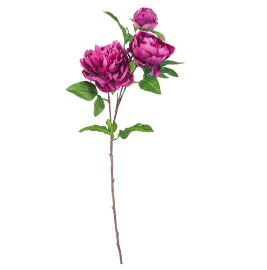 Mazzo di Peonie Linda – Viola